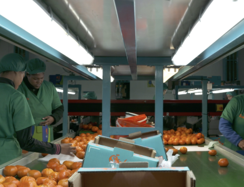 Farm Costing Solutions takes away the stress of managing Farm Labour